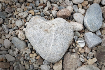 Heart-Centered Success | Humanitou Humanness + Creativity Blog